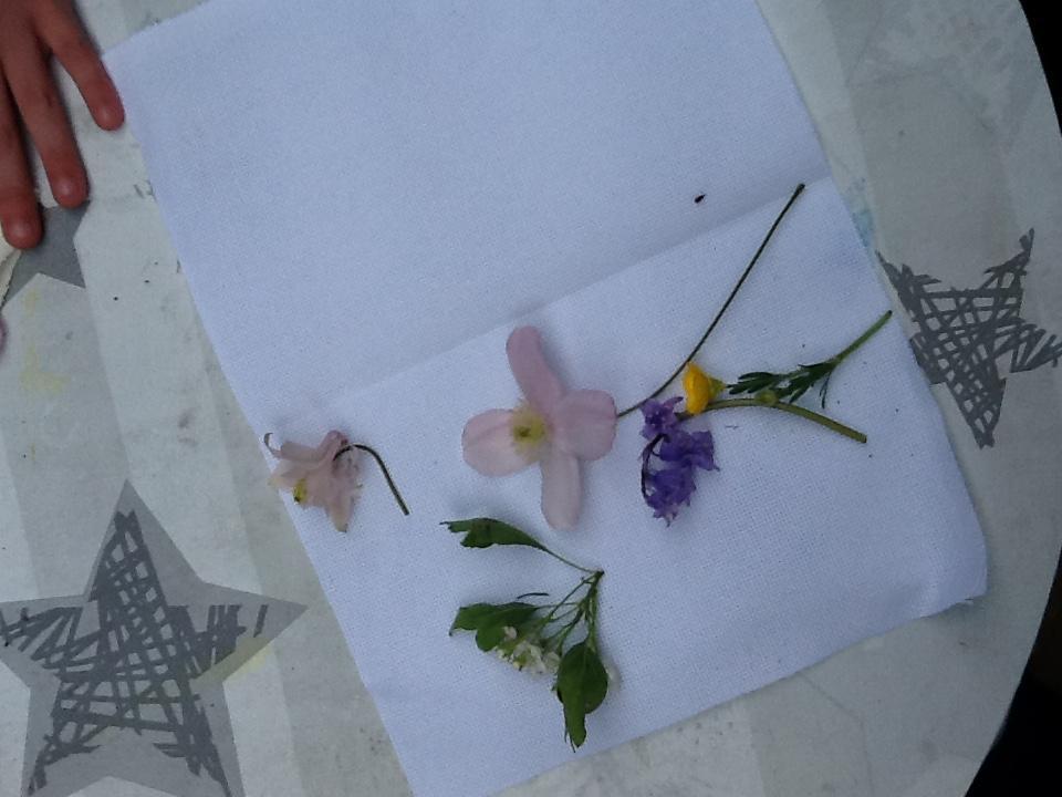 Key Worker Flower Pressing - Salterforth